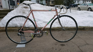 Beautiful vintage Montini Andante steel road bike