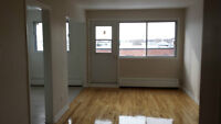 3 1/2 NDG Completely Renovated like Condo