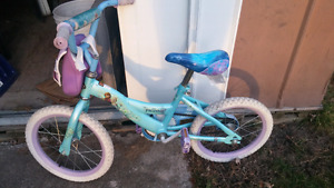 16' Frozen bike
