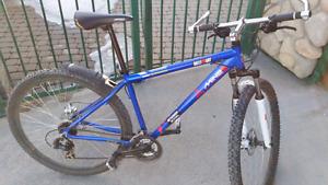 "Mountain Bike 21"""