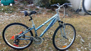 Used scwinn bike.