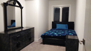 1 Bedroom + Den Furnished Executive Style Apartment