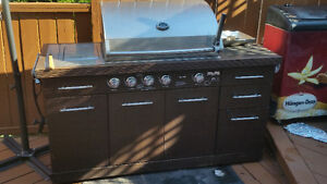 Bbq largre with a built in cooler