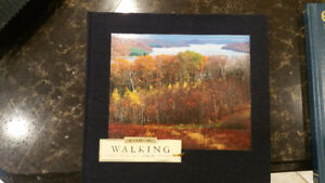 THE NATURE COMPANY HARDCOVER WALKING BOOK MINT