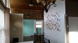 Main level house for rent, 2.5 rooms, f,s,w,d, ample storage St. John's Newfoundland image 6