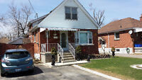 2 Bdrm, bsmt ap, FULLY RENOVATED on a cul-de-sac in the Mountain