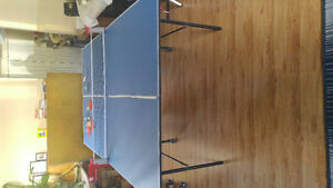 Table tennis/ ping pong table