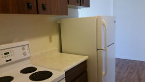 FEB HALF RENT - 1 Bedroom Apartment Whyte Ave - Close to UofA