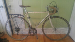 Fuji Palisade road bike