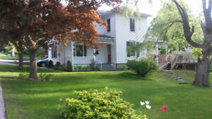 Room for Rent in a House on a Quiet Leafy Street in Picton