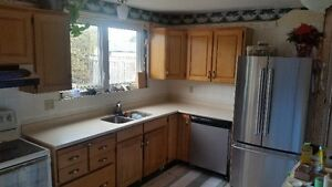 Used Hardwood kitchen cabinets w/Corian countertop plus sink