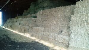 Square Hay and Straw Bales London Ontario image 2