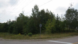 Vacant Land (Lot 62 ) Located down by Spine Beach (Elliot Lake)