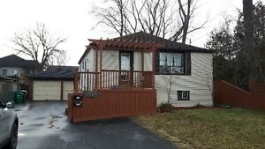 Port Credit Family home - Bungalow with finished basement