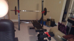 bench press/squat rack with bars and weights
