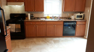 Beautifully updated condo. Kitchener / Waterloo Kitchener Area image 3