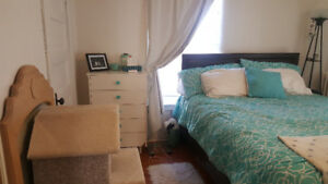 Bachelor in Truro available October 1