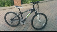 18 speed Nakamura 14 inch frame 24 inch wheels front suspension