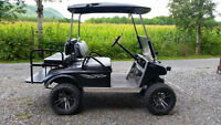 Kart de golf Club Car DS 2002 48 volts complètement modifié