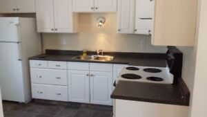 Recently Renovated 2 Bedroom, Washer & Dryer