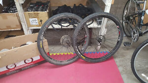 "Alex rims 29"" lightweight xc mtb wheels with tires"