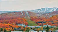 Tremblant- Resort Condo for rent near hill with awesome view.
