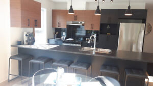 New/ Modern Construction 4 1/2 for rent in Chomedey, February
