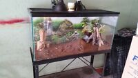 Large terrarium with complete accesories and stand