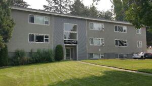 Mountview Manor - Studio