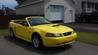 2001 Ford Mustang Autre