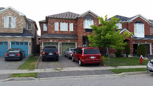 Specious two bedrooms basement apartment: Brampton