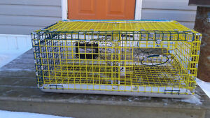 31 New 3' Wire Lobster Traps