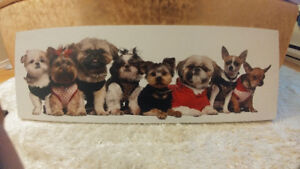 Small Dog Canvas
