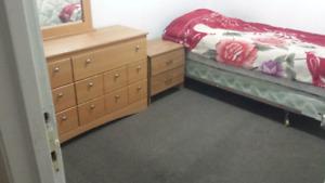 main floor single room 4036517971