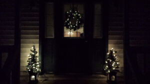 Outdoor Decorative Christmas Trees