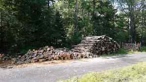 Firewood junked / lawn mowing