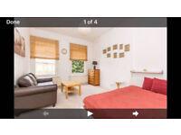 Amazing studio flat in zone 2!