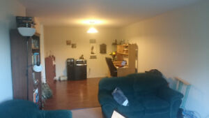 Female roommate wanted: Clayton Park, 470$+electric