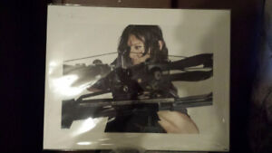 Norman Reedus Walking Dead signed poster Signed Autograph