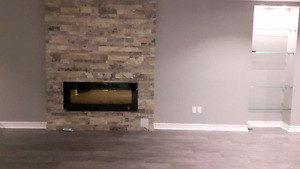 Modern basement apartment with gas fireplace