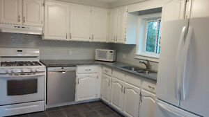 Spacious 3 bedroom apartment in house with backyard