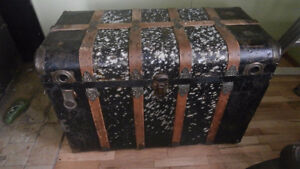 very large old trunk