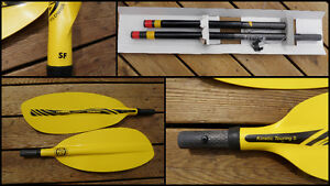 Pagaie Kayak de mer Lendal manche carbone 220 cm