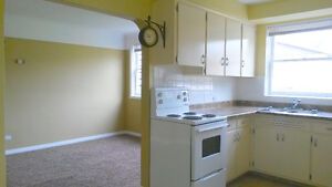 BRIGHT CHARACTER 1 BDRM+DEN APT. HEAT INCLUDED (South Shore)
