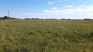 20.19 ACRES OF LAND- WEST OF CARSTAIRS FOR SALE