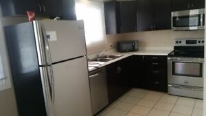 Modern 3 bedroom apartment in new sudbury with back yard