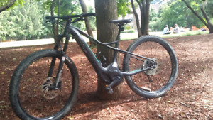 Specialized Hardtail levo