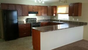 3 bedroom completely renovated upper level suite