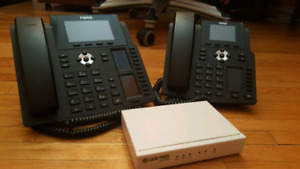 IP phone system with 2 phones