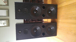 Abstract acoustic 2x12 speakers
